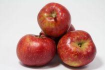 Pommes BOSKOOP