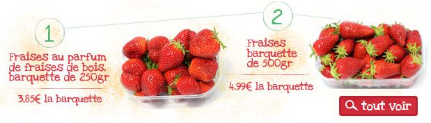 Fruits, fraises de plein champs