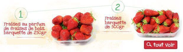 fraises et fruits de plein champs