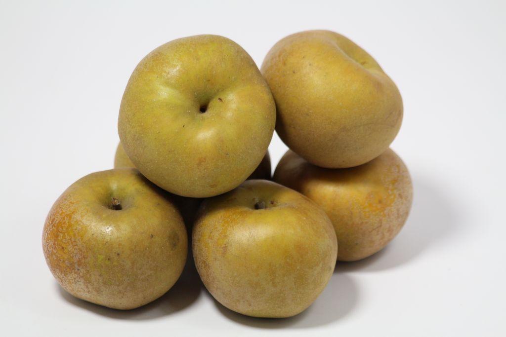 Pommes reinette du canada gris