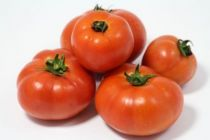Tomates de plein champs